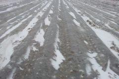 czerwinsk-2013-1