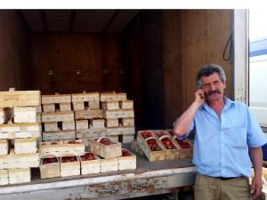 Ceny truskawek bronisze